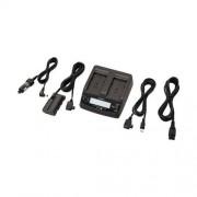 Sony AC-VQ1051D - Adapteur d'alimentation et chargeur de batterie (prise CC) - pour Handycam FDR-AX1, AX1E, HDR-AX2000, FX1000; NP-F570, F770, F970