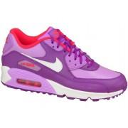 Nike Air Max 90 Gs Violet