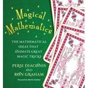 Magical Mathematics: The Mathematical Ideas That Animate Great Magic Tricks, Hardcover/Persi Diaconis