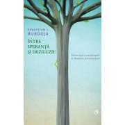 Intre speranta si deziluzie. Democratie si anticoruptie in Romania postcomunista (eBook)