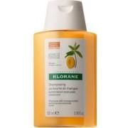 Klorane (Pierre Fabre It. Spa) Klorane Shampoo Mango 100 Ml