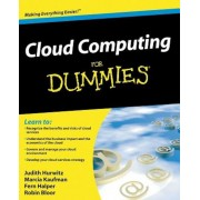 Cloud Computing for Dummies, Paperback