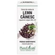 Extract Mladite Lemn Cainesc 50ml PlantExtrakt