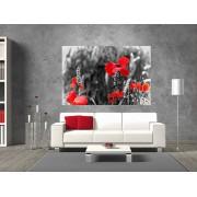 "Tablou grand canvas ""Flori de Maci"" - cod Z30"