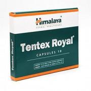 TENTEX ROYAL 10cps