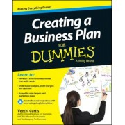 Creating a Business Plan for Dummies, Paperback