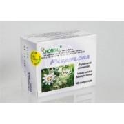 Passiflora Hofigal 40cpr