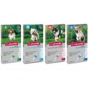 ADVANTIX Antiparassitario Per Cani Confezione Da 4 Fiale Per Cani Con Peso Inferiore A 4 Kg