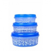 Nucleya Retail Set of 3 Plastics Designer Container Plastic Food Storage Containers Box (Blue)