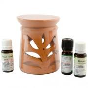 Candelă de aromaterapie și 3 sticluțe de ulei de parfum 10ml: Floral Beauty, Vanilie și Cocos