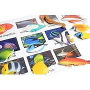 Montessori Animal Match Miniature Tropical Fish Figurines With Matching Cards 2 Part Cards. Montessori Learning Toy, Language Materials