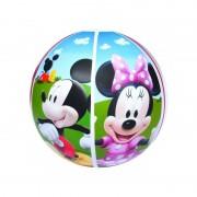 Minge plaja Mickey Mouse