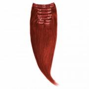 Clip-On Par Natural Volum 50cm 180gr Roscat #33