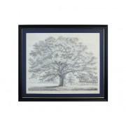 G&C Tavla Oak Tree