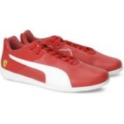 Puma Ferrari SF Future Cat Casual Sneakers For Men(Red)