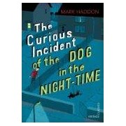 Haddon Mark The Curious Incident Of The Dog In The Night-time (ebook)