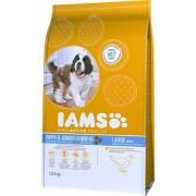 IAMS Dog Puppy & Junior Large Chicken | Csirkehúsos eledel kölyök és növendék kutyák részére 12kg