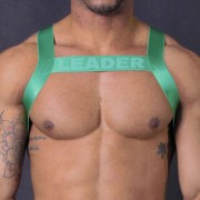 Leader Barcelona X Back Bar Harness Green