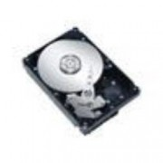 HDD 1000 GB SERIAL ATA III NON HOT PLUG 3.5