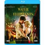 Water for Eelephants BluRay 2011