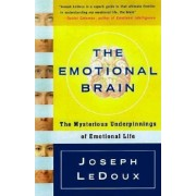 The Emotional Brain: The Mysterious Underpinnings of Emotional Life, Paperback