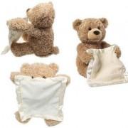 Peek a Boo Interactive Teddy Bear