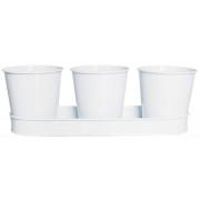 Set 3 ghivece albe cu suport dreptunghiular