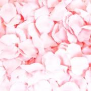 Petali rosa sintetici - confezione da 1000 pezzi