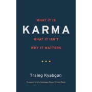Karma: What It Is, What It Isn't, Why It Matters, Paperback