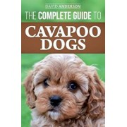 The Complete Guide to Cavapoo Dogs: Everything You Need to Know to Successfully Raise and Train Your New Cavapoo Puppy, Paperback/David Anderson