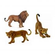 Set 3 figurine Familie de Lei Africani Collecta, 3 ani+
