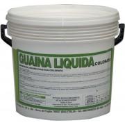 vodichem Guainaliquidacolorata Guaina Liquida Impermeabilizzante Resine Sintetiche Pronta All'Uso Colore Bianco Quantità 5 Kg