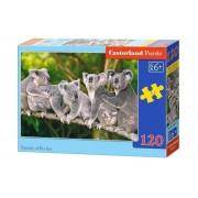 Puzzle Familie ursuleti Koala, 120 piese