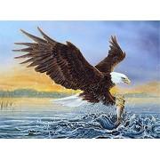 DIY Diamond Painting Eagle Diamonds Embroidery Mosaic Rhinestones Pictures Handicraft
