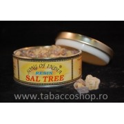 Rasina Song of India Sal Tree 60gr