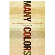 Many Colors: Cultural Intelligence for a Changing Church, Paperback