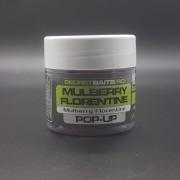 Secret Baits Mulberry Florentine Pop-ups