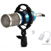 Aeoss Condenser Microphone Mic For Studio Broadcasting And Recording With Free Usb sound card