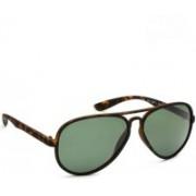 Daniel Klein Aviator Sunglasses(Green)
