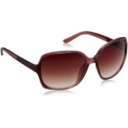 Image Over-sized Sunglasses(Brown)