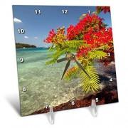 3dRose Reloj de Mesa con diseño de árbol de Navidad, Isla de Tortuga, Islas Yasawa, Fiyi, 15,2 x 15,2 cm