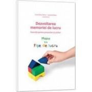 Dezvoltarea memoriei de lucru. Mapa cu fise de lucru - Laura Visu-Petra Lavinia Cheie