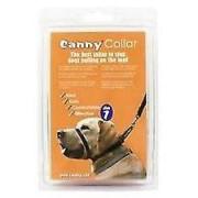 Canny Dog Collare Colore Nero (Cani , Training e addestramento , Gu...