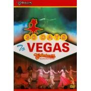 Bellydance Superstars: 30 Days to Vegas [DVD] [2007]