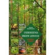 Uszkodzenia drzew leśnych