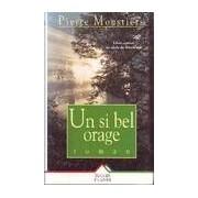 Un si bel orage - Pierre Moustiers - Livre