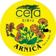 Unguent arnica, 40g, Ceta Sibiu
