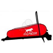 dogPACER bandă de alergare Până la 80 kg