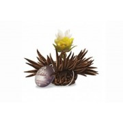 Kvetoucí čaj - Bergamotová perla