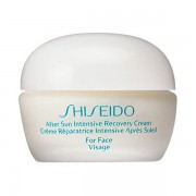 Shiseido After Sun After Sun Intensive Recovery Cream Face
